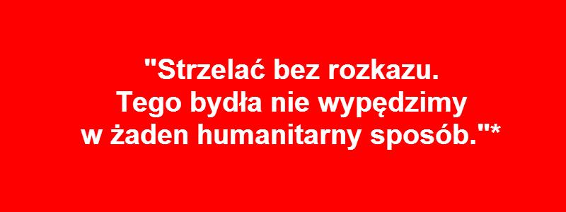 hejt_6