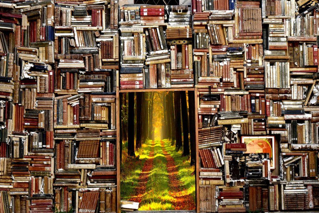 Jak czytać w ciemności – Traktat z Marrakeszu i przepisy unijne